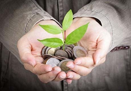 gestionar la banca de apostador